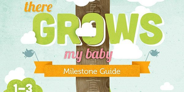 Baby Milestone Chart Preview