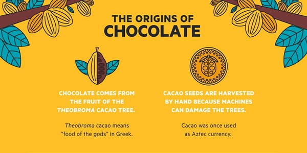 Why Chocolate Should be a Workday Staple